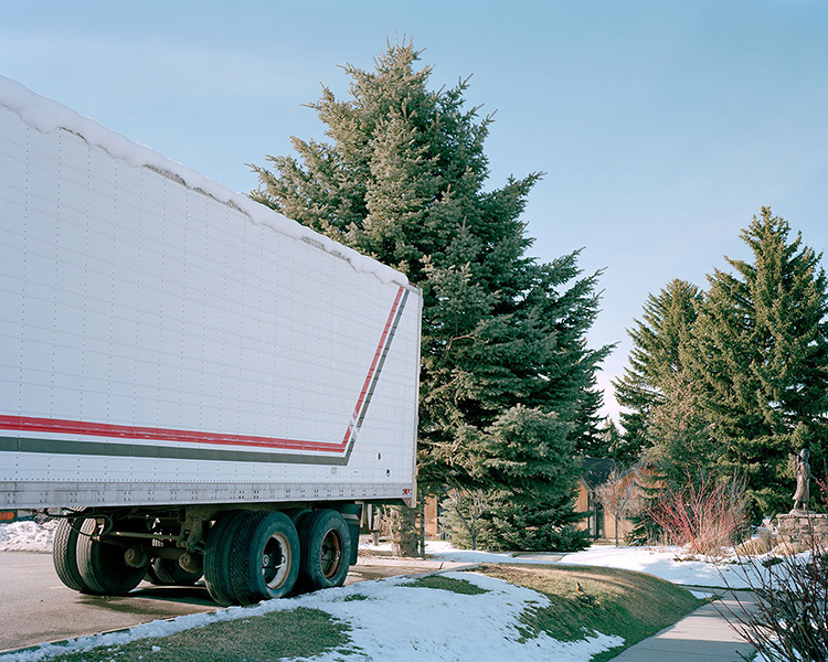 Tree with trailer, 2011