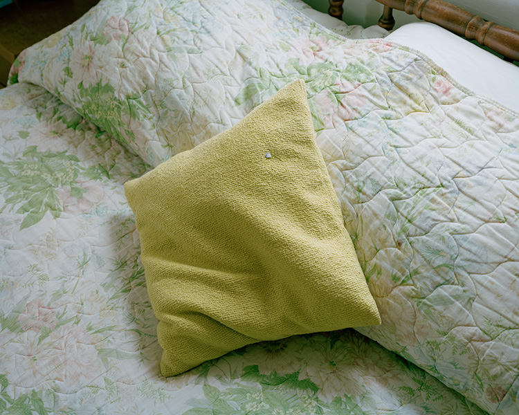 Pillow with speck of paper